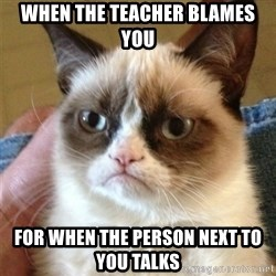 Grumpy Cat  - WHen the teacher blames you for when the person next to you talks