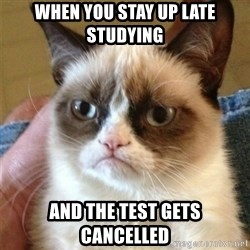 Grumpy Cat  - WHen you stay up late studying and the test gets cancelled