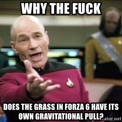Why the fuck - Why the fuck Does the grass in Forza 6 have its own gravitational pull?