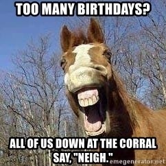 """Horse - Too many birthdays? all of us down at the corral say, """"neigh."""""""