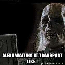 OP will surely deliver skeleton -  ALEXA Waiting at transport like...
