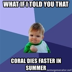 Success Kid - what if I told you that  coral dies faster in summer