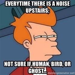 Not sure if troll - Everytime there is a noise upstairs: Not sure if Human, Bird, or ghost...