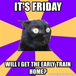 Anxiety Cat - IT'S FRIDAY WILL I GET THE EARLY TRAIN HOME?