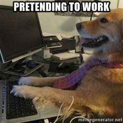I have no idea what I'm doing - Dog with Tie - PRETENDING TO WORK