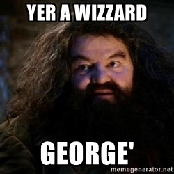Yer A Wizard Harry Hagrid - Yer a Wizzard George'