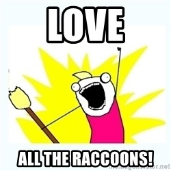 All the things - Love All the raccoons!