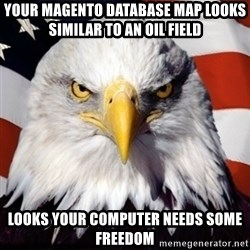 Freedom Eagle  - Your magento database map looks similar to an oil field Looks your computer needs some freedom