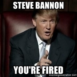 Donald Trump - steve bannon you're fired