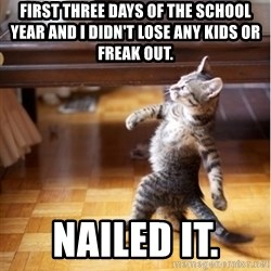 walking cat - First Three Days Of The School YEAR And I Didn't Lose ANY Kids Or Freak Out.  Nailed It.