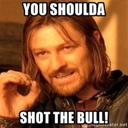 One Does Not Simply - You shoulda Shot the bull!