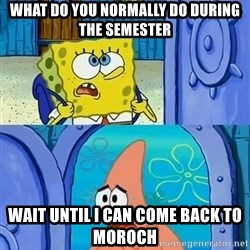 What do you normally do when I'm gone - What do you normally do during the sEmester WaiT until i can come back to moroch
