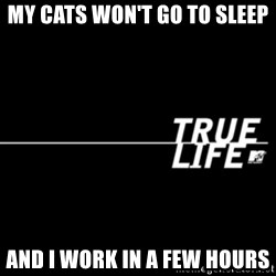 true life - My cats won't go to Sleep And i work In a few hours