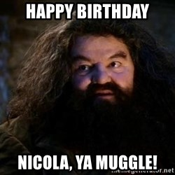 Yer A Wizard Harry Hagrid - Happy birthday Nicola, ya muggle!