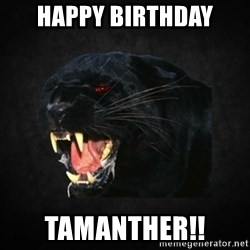 Roleplay Panther - HAPPY BIRTHDAY TAMANTHER!!