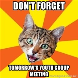 Bad Advice Cat - don't forget tomorrow's youth group meeting