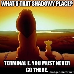 simba mufasa - What's that shAdowy place? Terminal e. You must never go there.