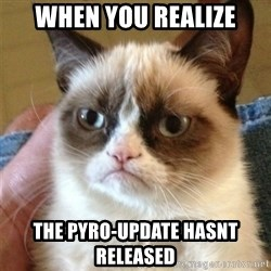 Grumpy Cat  - When you realize the pyro-update hasnt released