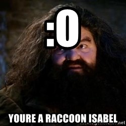 Yer A Wizard Harry Hagrid - :o Youre a raccoon isabel