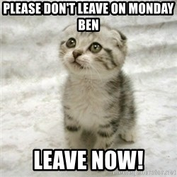 Can haz cat - Please don't leave on Monday Ben Leave now!