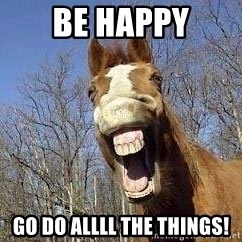 Horse - Be Happy Go do allll the things!