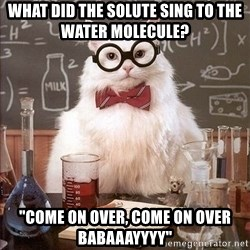 "Chemistry Cat - what did the solute sing to the water molecule?  ""come on over, come on over babaaayyyy"""