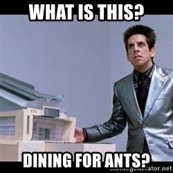 Zoolander for Ants - What IS THIS? Dining for ants?