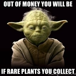 ProYodaAdvice - out of money you will be if rare plants you collect