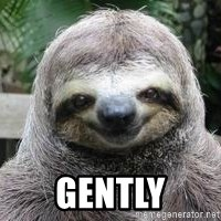 Sexual Sloth -  Gently