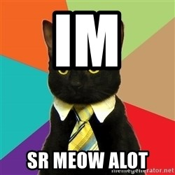 Business Cat - im  sr meow alot