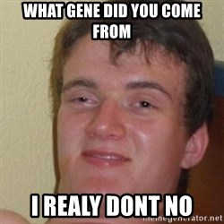 really high guy - What gene did you cOme from I realY dont no