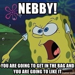 Spongebob Rage - NEBBY! YOU ARE GOING TO GET IN THE BAG AND YOU ARE GOING TO LIKE IT