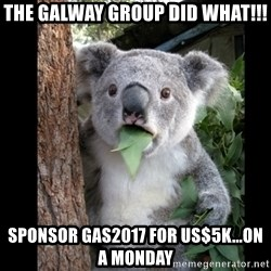 Koala can't believe it - The Galway Group did what!!! Sponsor GAS2017 for US$5k...on a Monday