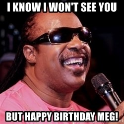 stevie wonder - I know i won't see you But Happy Birthday Meg!