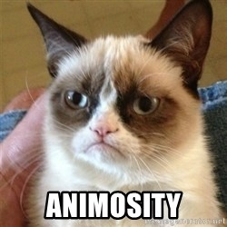 Grumpy Cat  -  Animosity