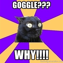 Anxiety Cat - Goggle??? Why!!!!