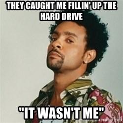 "Shaggy. It wasn't me - they caught me fillin' up the hard drive ""it wasn't me"""