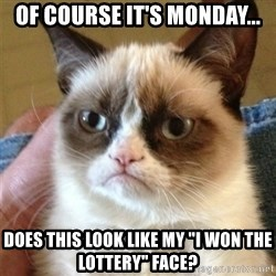 """Grumpy Cat  - of course it's monday... does this look like my """"I won the lottery"""" face?"""