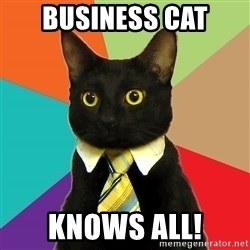 Business Cat - Business Cat Knows All!