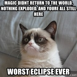 Grumpy Cat  - MAgic Didnt Return to the World, Nothing Exploded, And youre all still here Worst Eclipse Ever