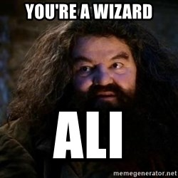 Yer A Wizard Harry Hagrid - You're a wizard Ali