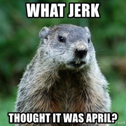 grumpy groundhog - What jerk Thought it was april?