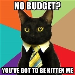 Business Cat - no budget? you've got to be kitten me