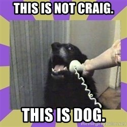 Yes, this is dog! - this is not craig. this is dog.