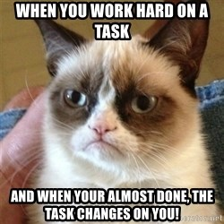 Grumpy Cat  - When you work hard on a task  and when your almost done, the task changes on you!