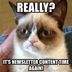 Grumpy Cat  - Really? It's newsletter content time again!