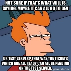 Futurama Fry - not sure if that's what WIll is saying. Maybe it can all go to dev or test server? That way the tickets which are all ready can all be pending on the test server.