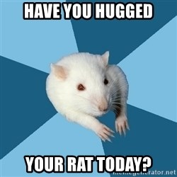 Psychology Major Rat - Have you hugged Your Rat today?