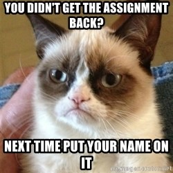 Grumpy Cat  - You Didn't Get The Assignment Back?  Next Time Put Your Name On it