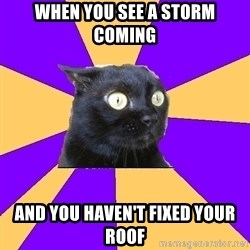 Anxiety Cat - WHEN YOU SEE A STORM COMING AND YOU HAVEN'T FIXED YOUR ROOF